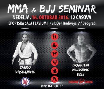MMA i BJJ seminar